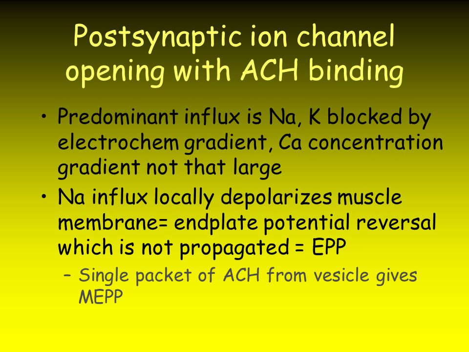 Postsynaptic ion channel opening with ACH binding