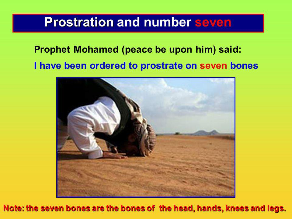 Prostration and number seven