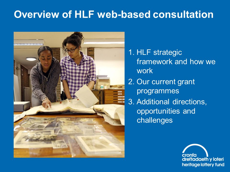 Overview of HLF web-based consultation