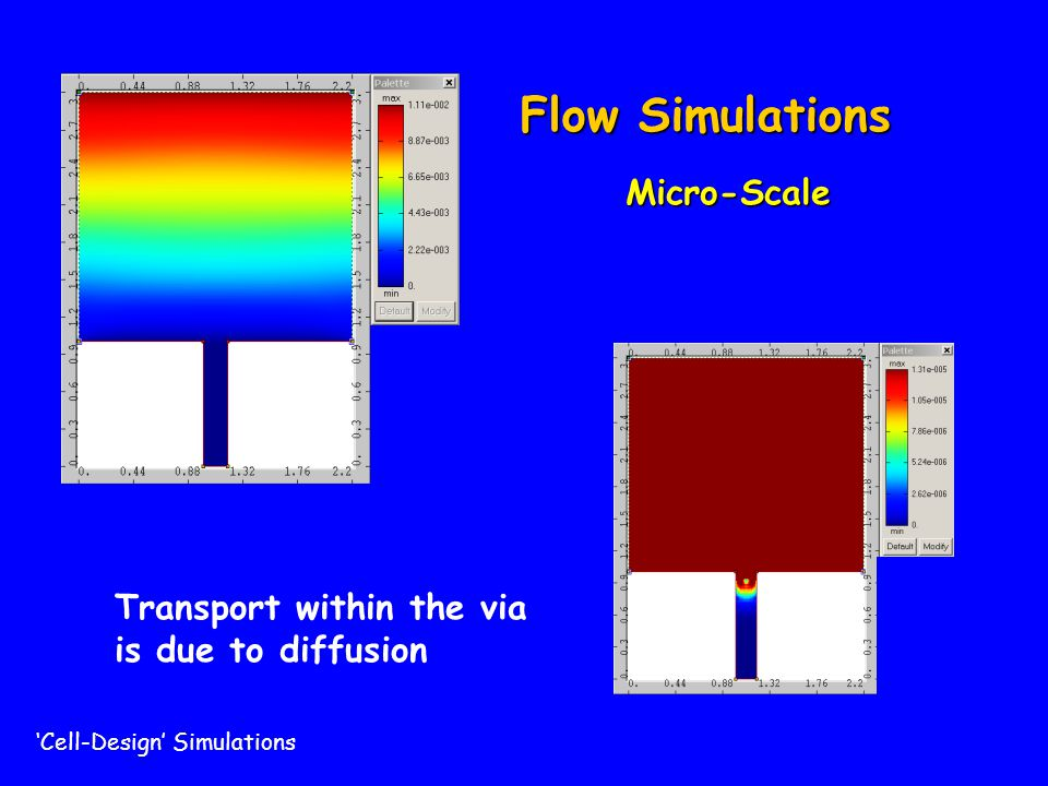Flow Simulations Micro-Scale