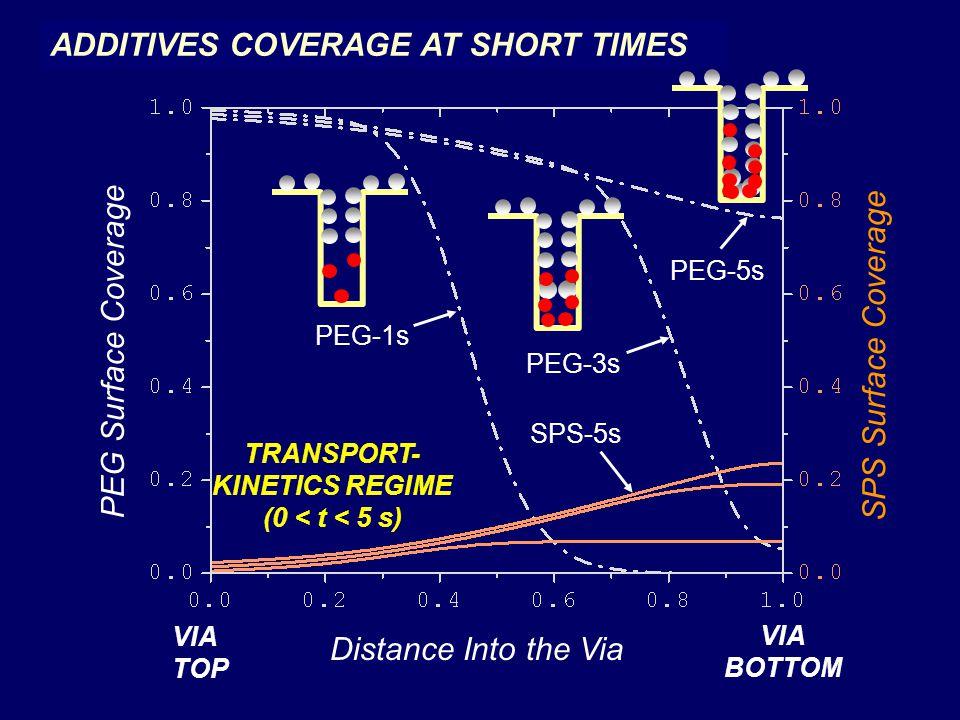 TRANSPORT-KINETICS REGIME (0 < t < 5 s)