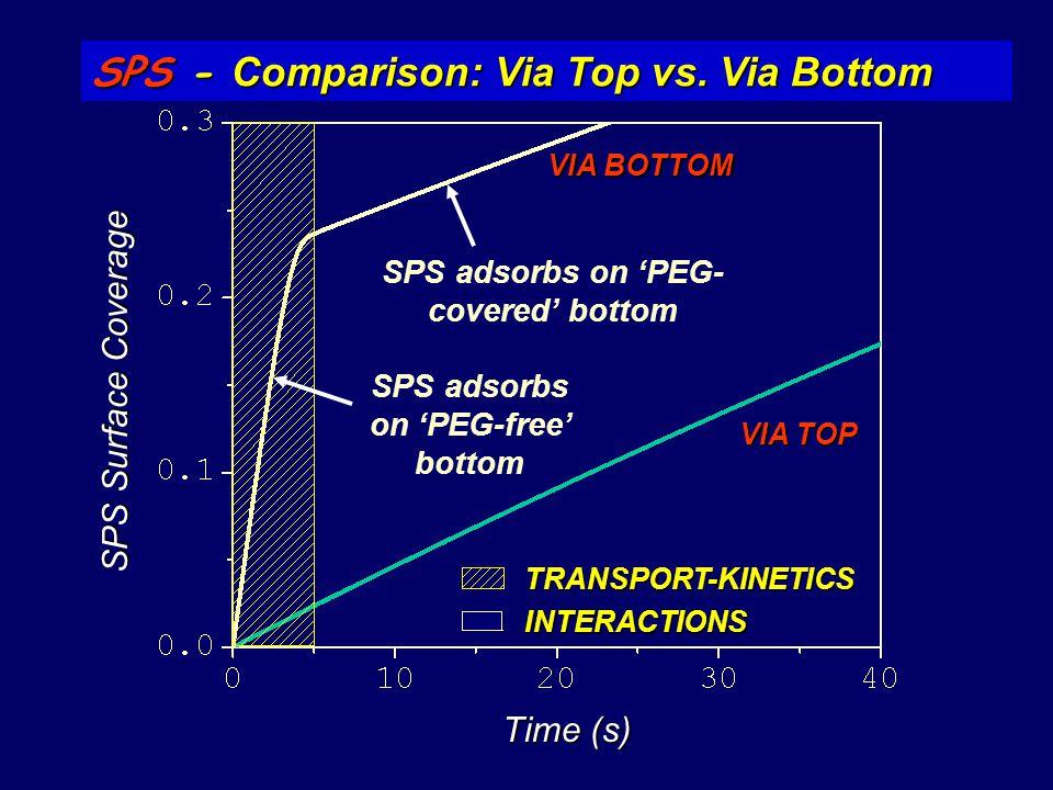 SPS adsorbs on 'PEG-covered' bottom SPS adsorbs on 'PEG-free' bottom