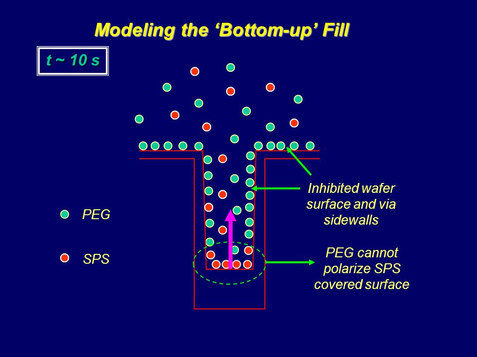 Modeling the 'Bottom-up' Fill