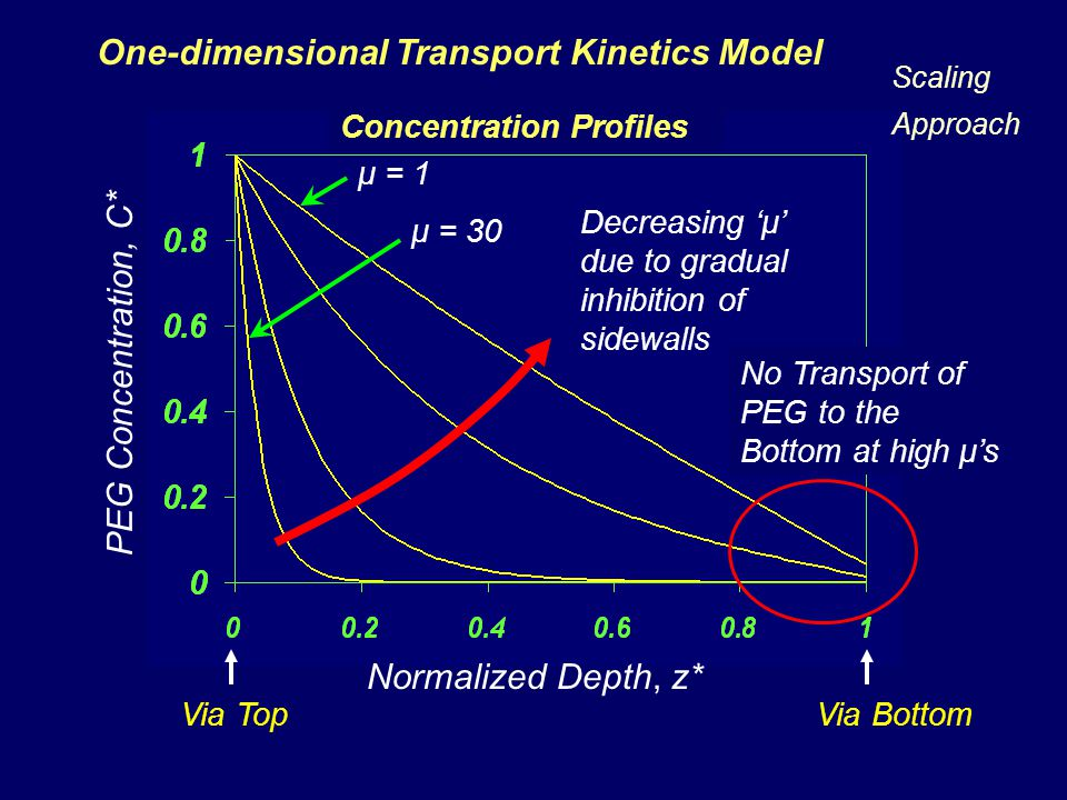One-dimensional Transport Kinetics Model