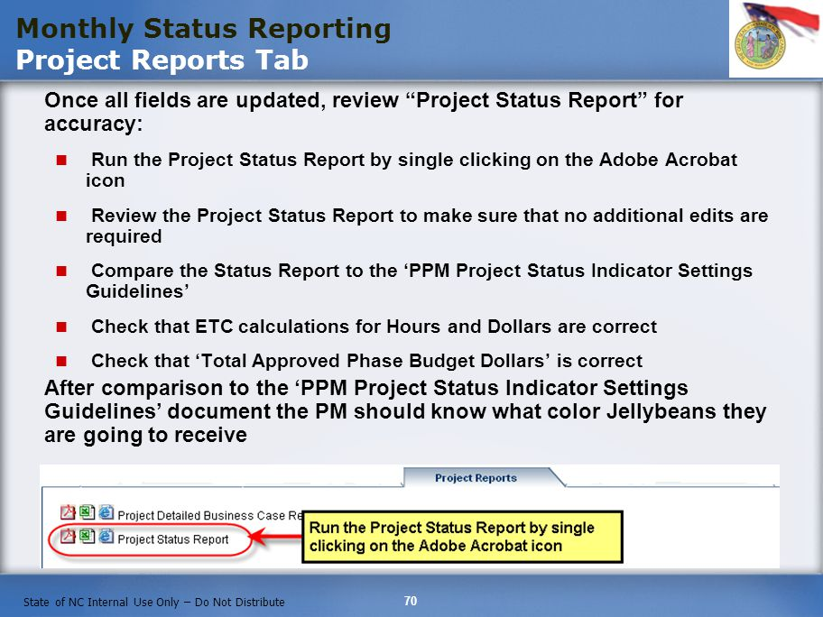 Monthly Status Reporting Project Reports Tab