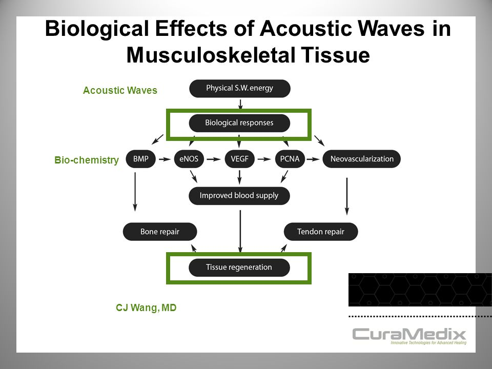 Biological Effects of Acoustic Waves in Musculoskeletal Tissue
