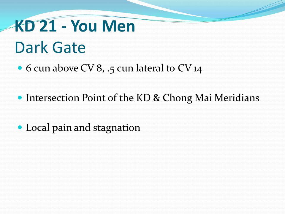 KD 21 - You Men Dark Gate 6 cun above CV 8, .5 cun lateral to CV 14