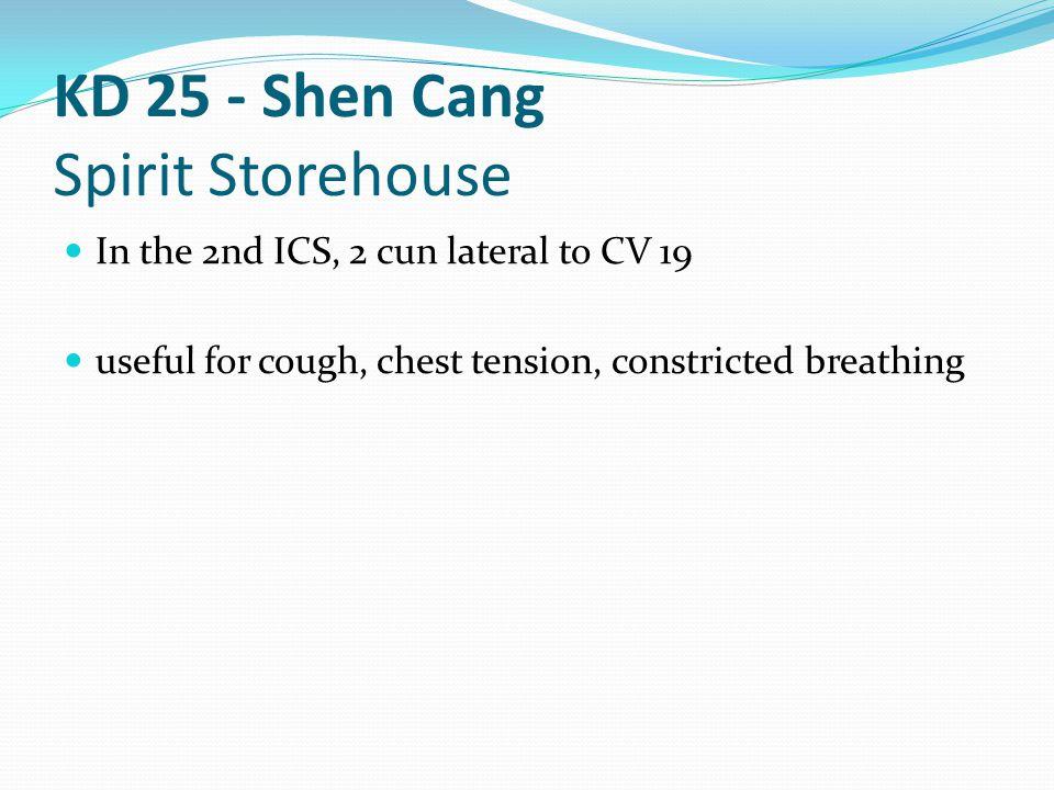 KD 25 - Shen Cang Spirit Storehouse
