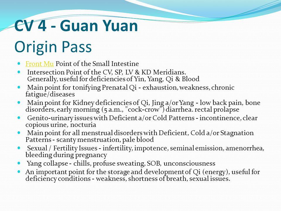 CV 4 - Guan Yuan Origin Pass