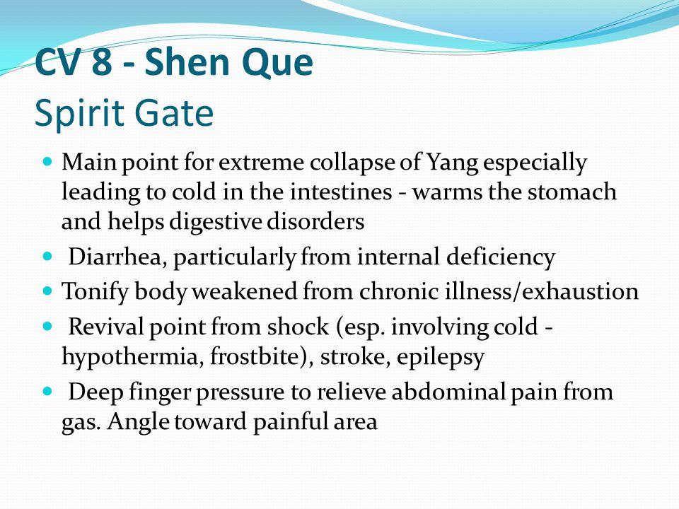 CV 8 - Shen Que Spirit Gate