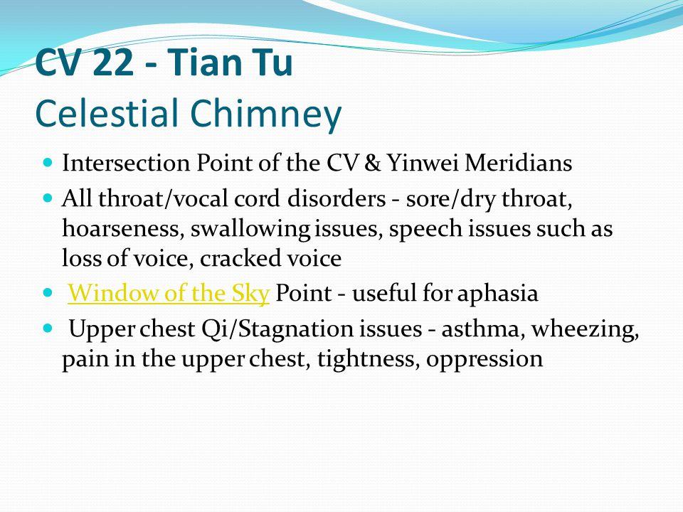 CV 22 - Tian Tu Celestial Chimney