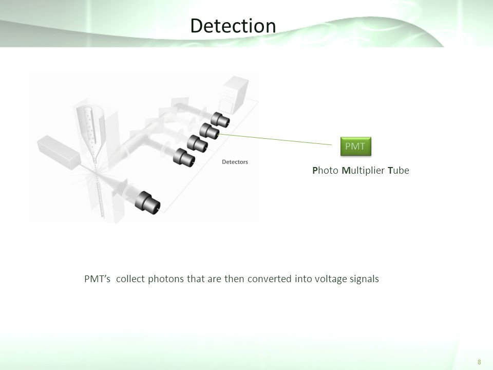 Detection PMT Photo Multiplier Tube