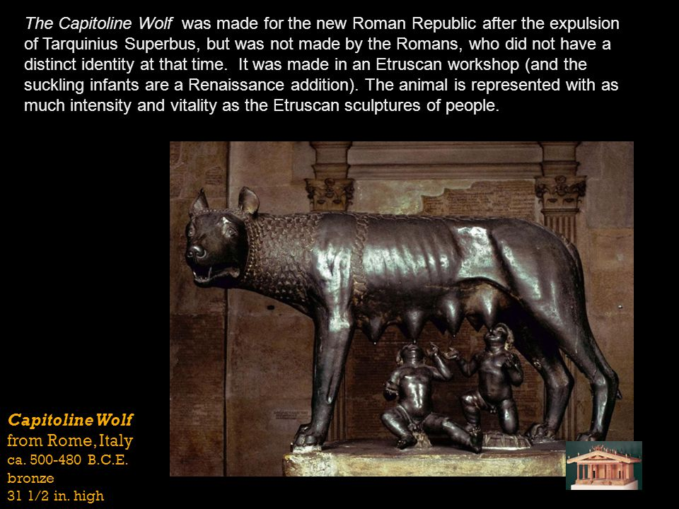 The Capitoline Wolf was made for the new Roman Republic after the expulsion of Tarquinius Superbus, but was not made by the Romans, who did not have a distinct identity at that time. It was made in an Etruscan workshop (and the suckling infants are a Renaissance addition). The animal is represented with as much intensity and vitality as the Etruscan sculptures of people.