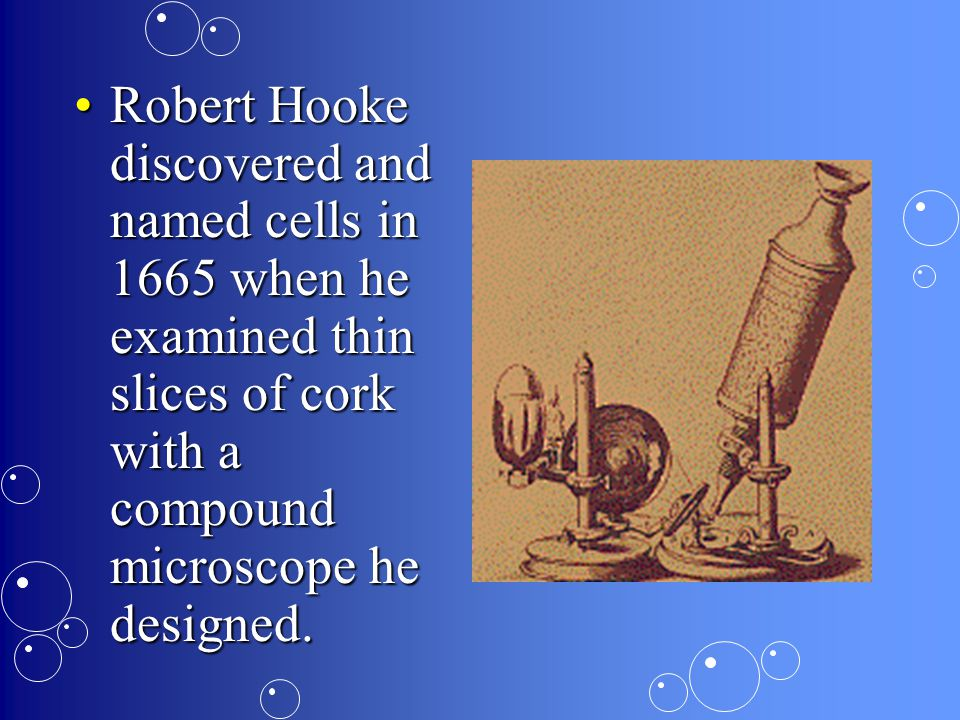 Robert Hooke discovered and named cells in 1665 when he examined thin slices of cork with a compound microscope he designed.