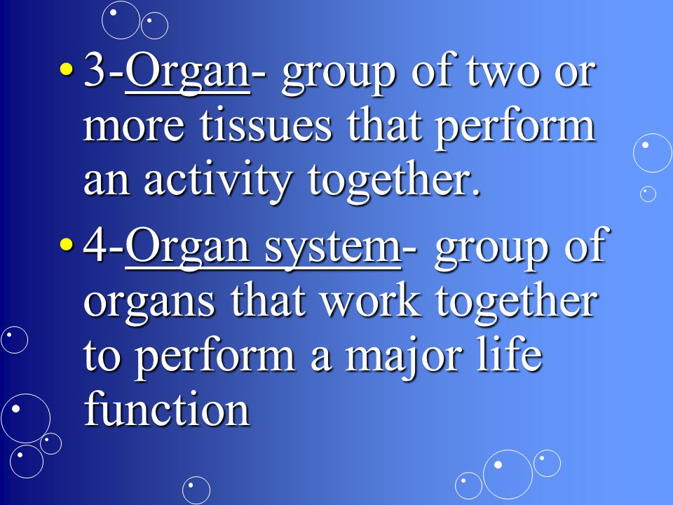 3-Organ- group of two or more tissues that perform an activity together.