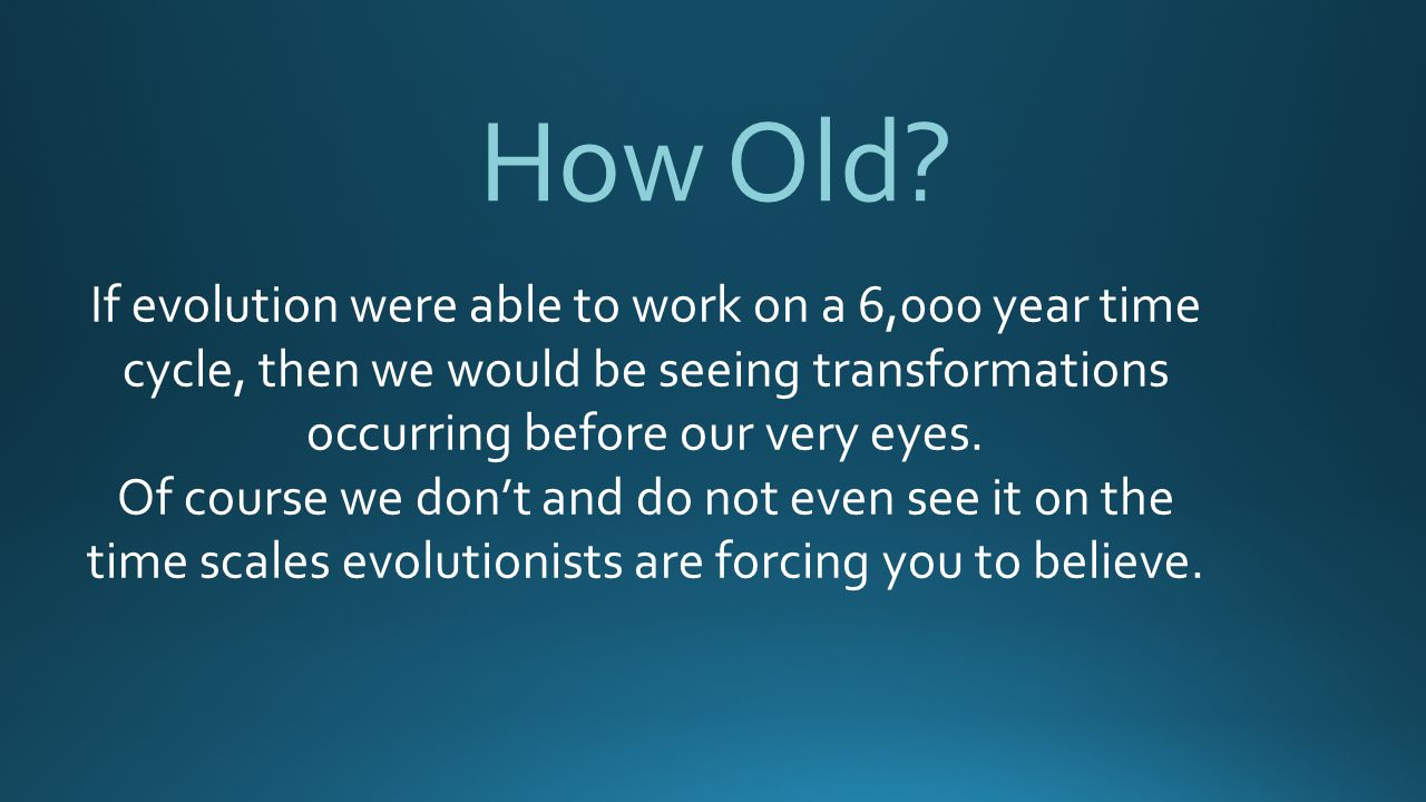 How Old If evolution were able to work on a 6,000 year time cycle, then we would be seeing transformations occurring before our very eyes.