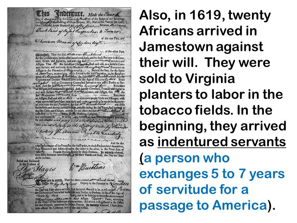 Also, in 1619, twenty Africans arrived in Jamestown against their will