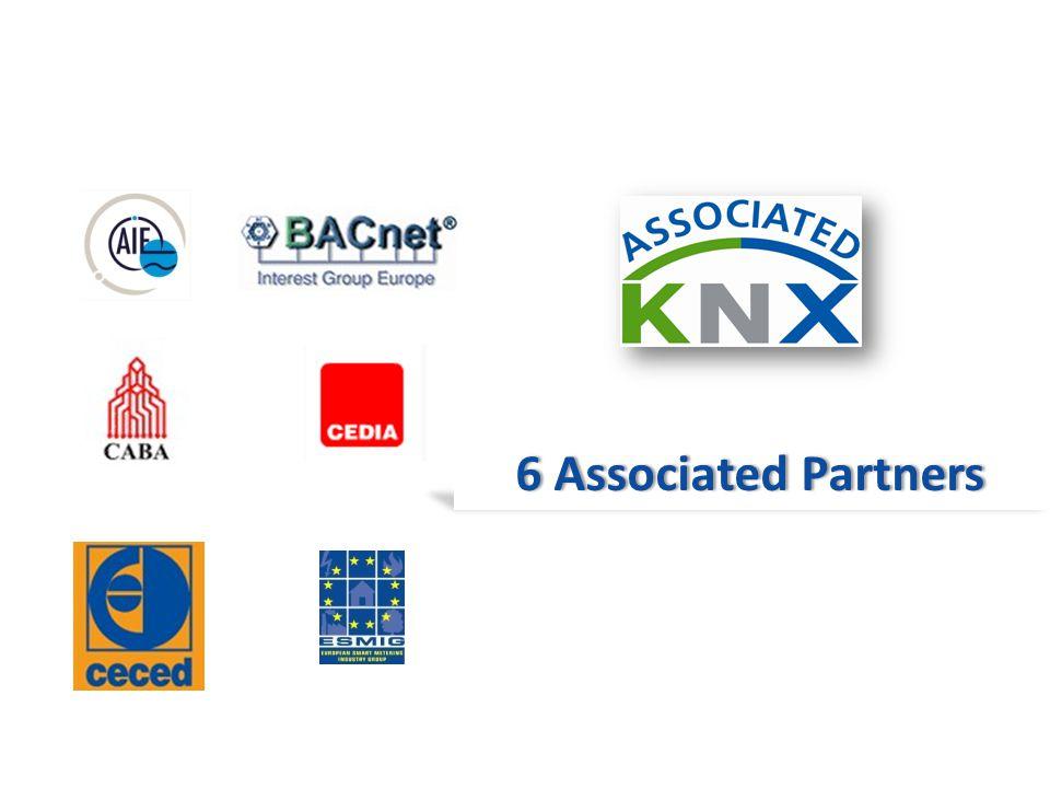 6 Associated Partners