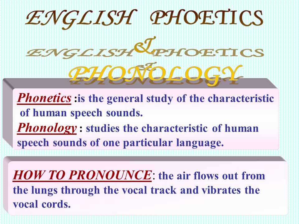 ENGLISH PHOETICS & PHONOLOGY
