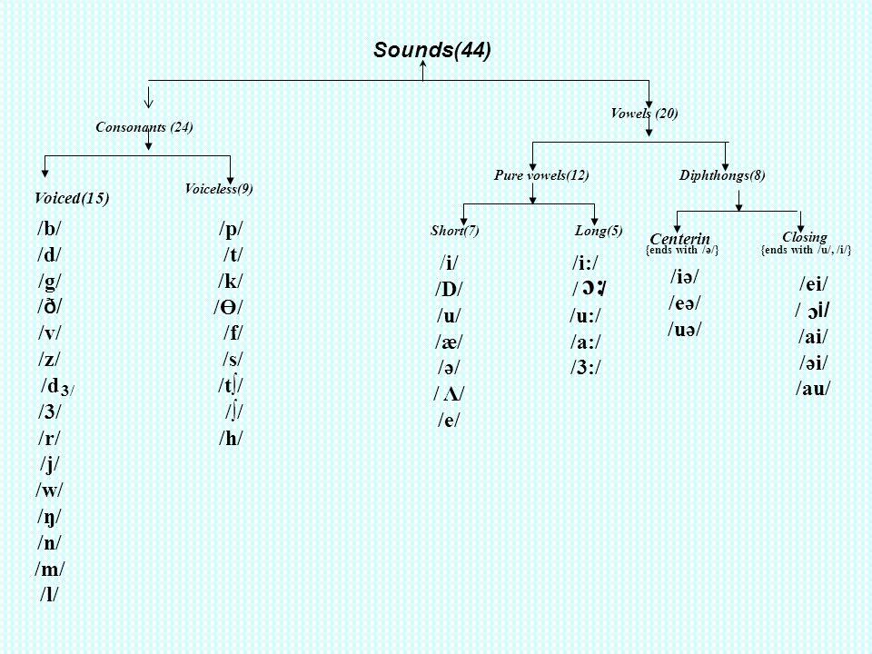 :c c Sounds(44) /b/ /d/ /g/ /ð/ /v/ /z/ /d /3/ /r/ /j/ /w/ /ŋ/ /n/ /m/