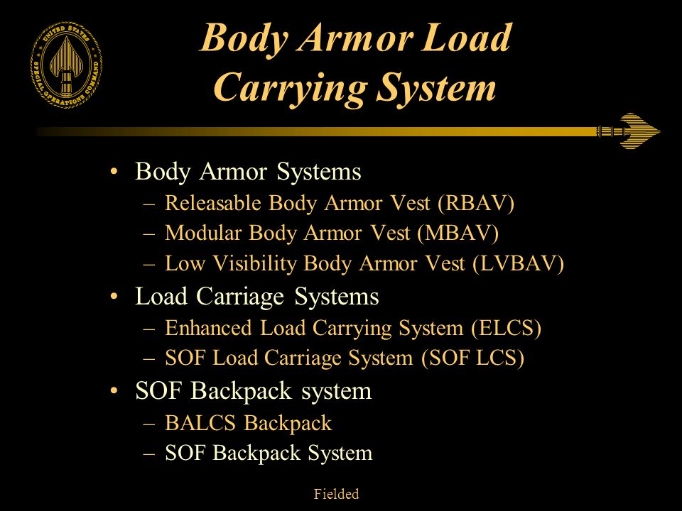 Body Armor Load Carrying System