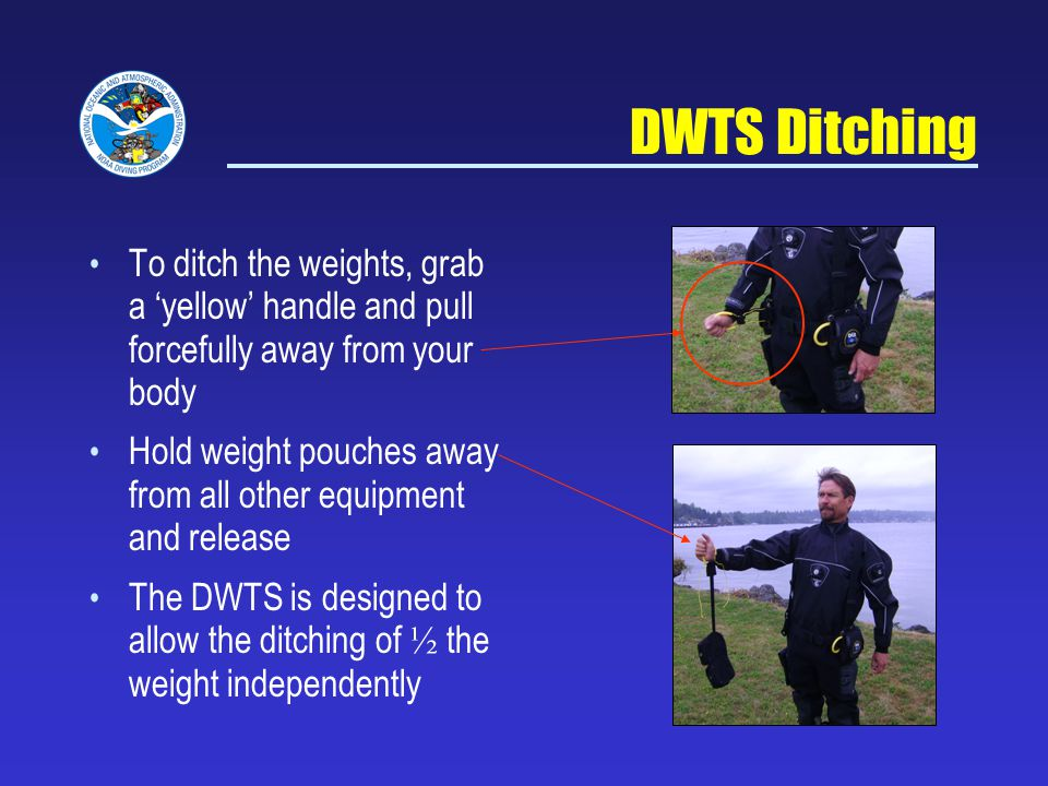 NOAA Diving Program Sept 5, 2007. DWTS Ditching. To ditch the weights, grab a 'yellow' handle and pull forcefully away from your body.