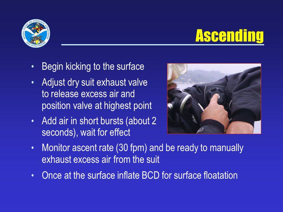 Ascending Begin kicking to the surface