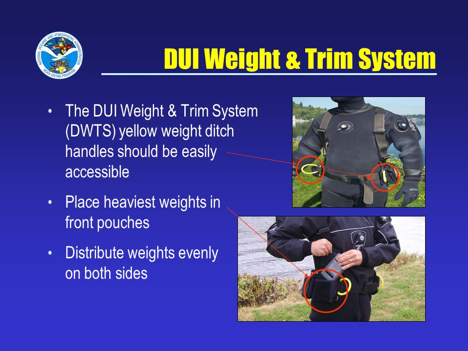 DUI Weight & Trim System
