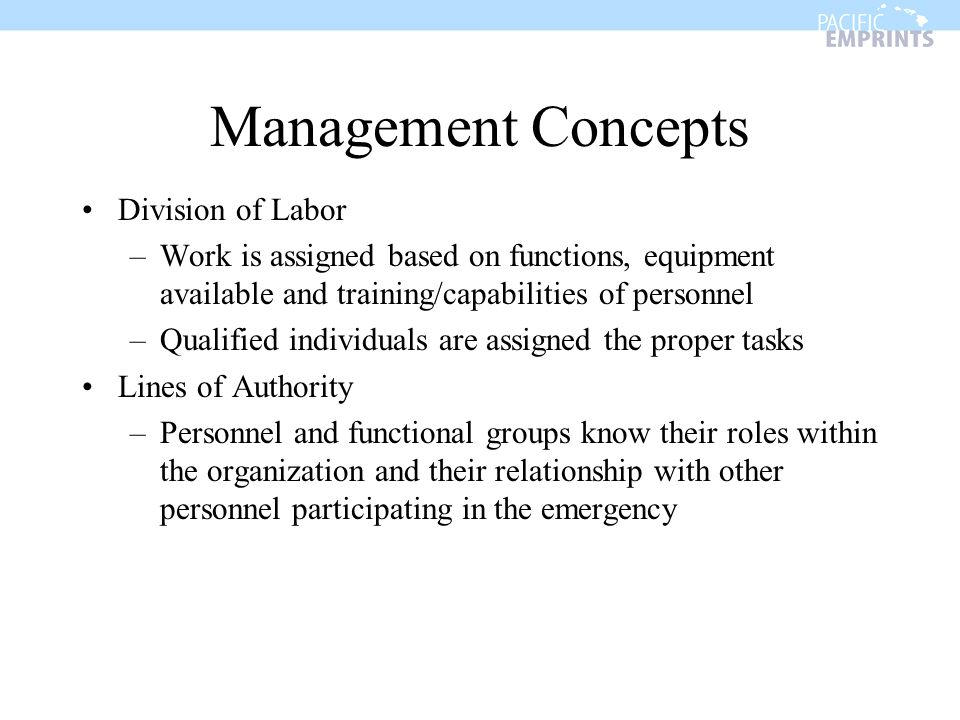 Management Concepts Division of Labor