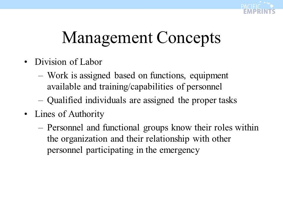 Management Concepts Division of Labor