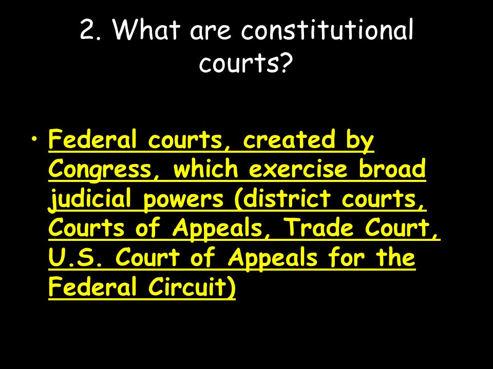 2. What are constitutional courts