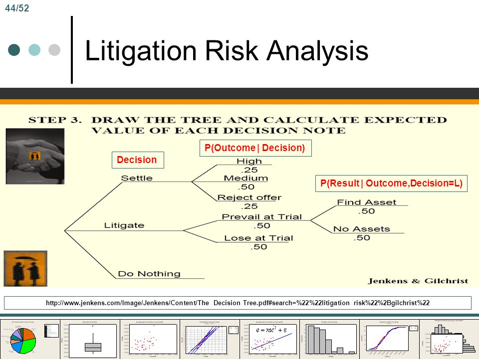 Litigation Risk Analysis
