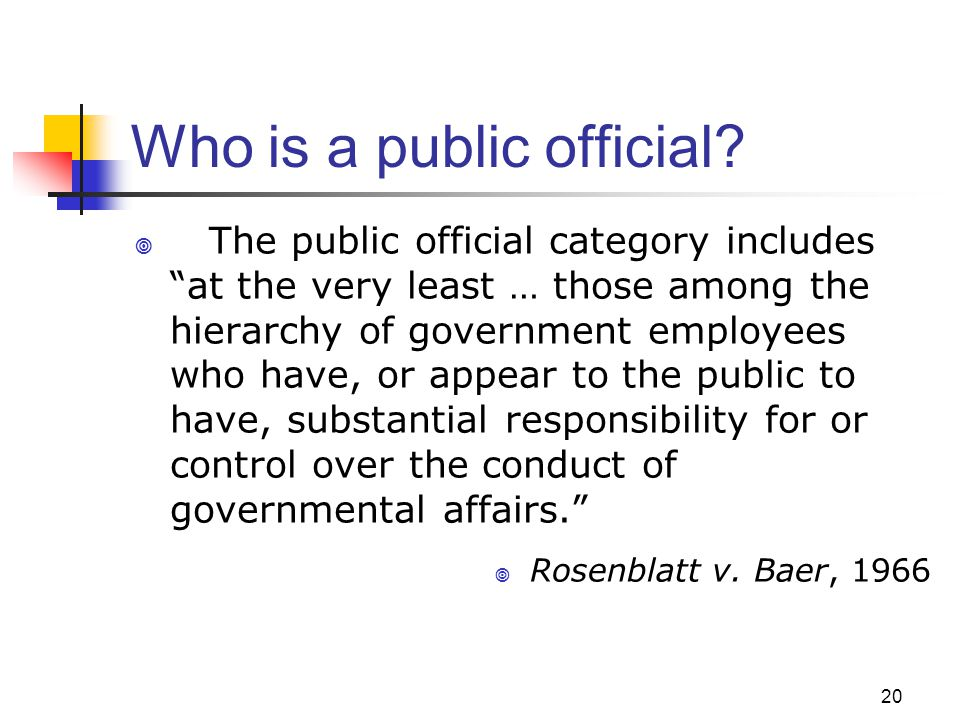Who is a public official