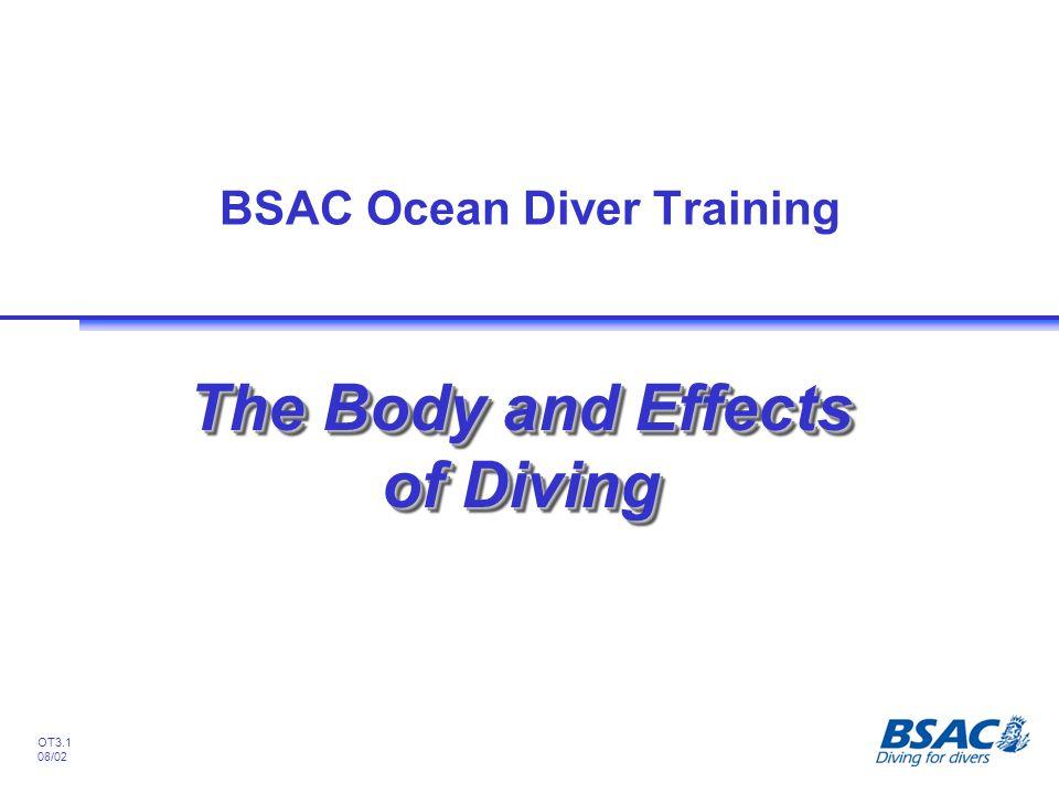 BSAC Ocean Diver Training