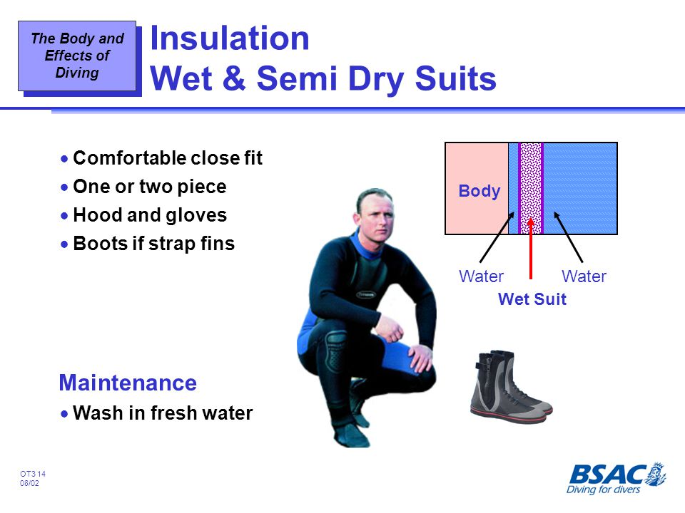 Insulation Wet & Semi Dry Suits