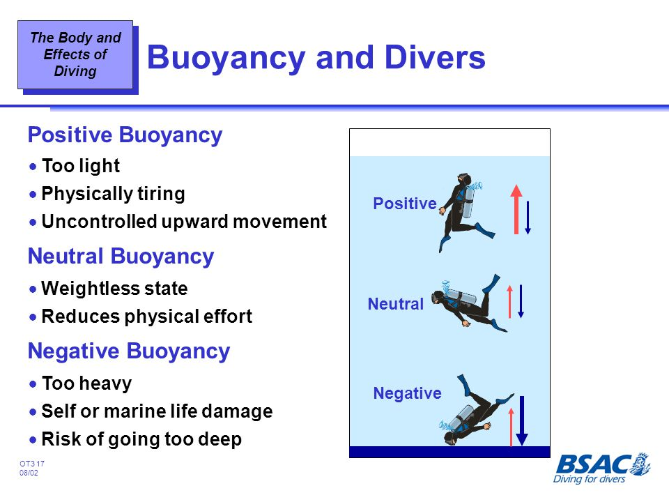 Buoyancy and Divers Positive Buoyancy Neutral Buoyancy