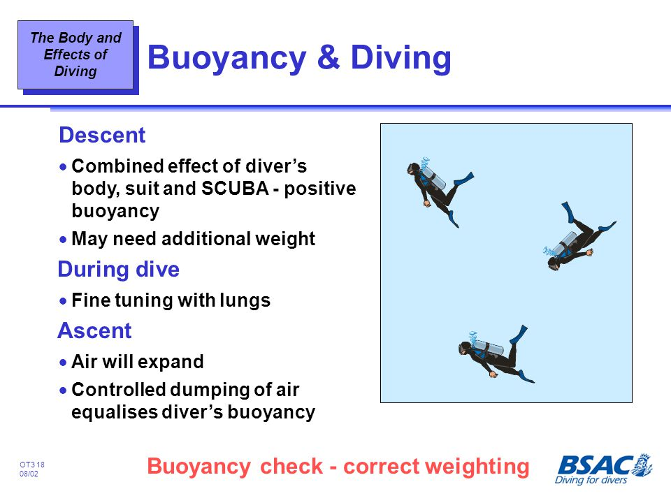 Buoyancy & Diving Descent During dive Ascent