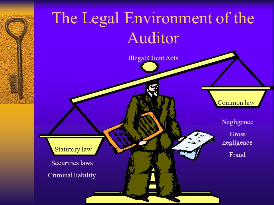 The Legal Environment of the Auditor