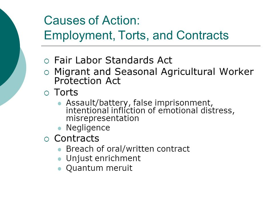 Causes of Action: Employment, Torts, and Contracts