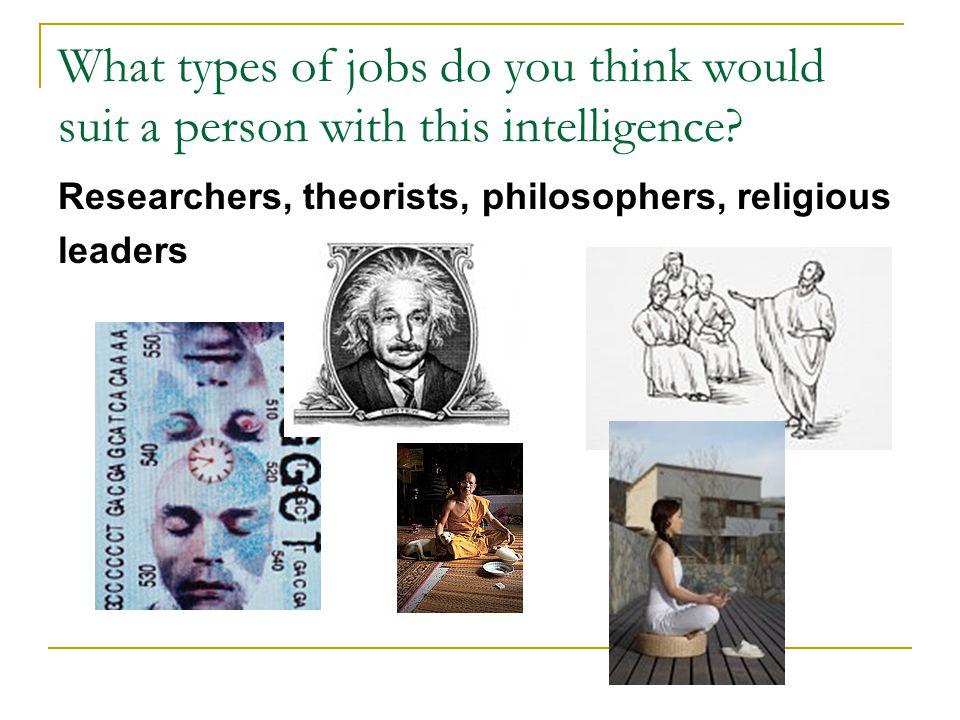 What types of jobs do you think would suit a person with this intelligence