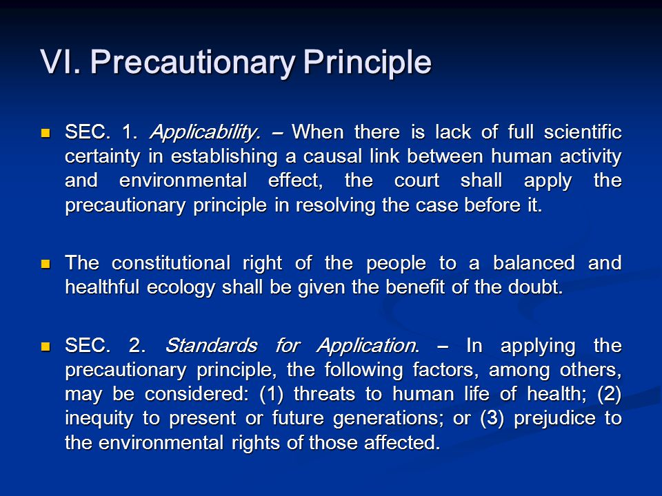 VI. Precautionary Principle