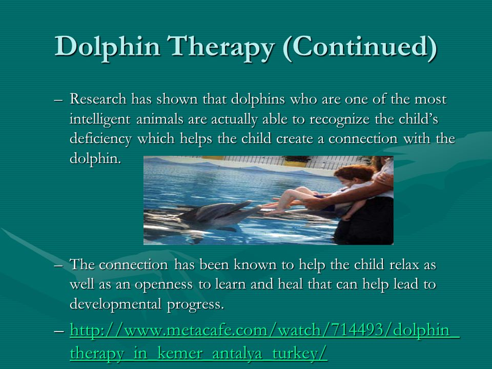 Dolphin Therapy (Continued)