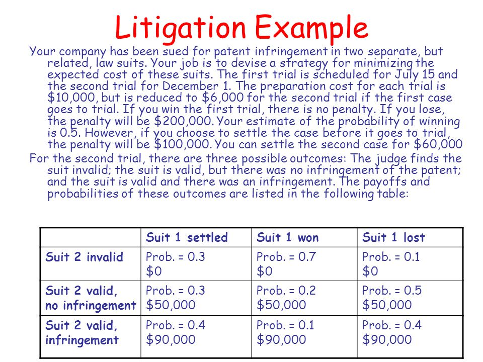 Litigation Example