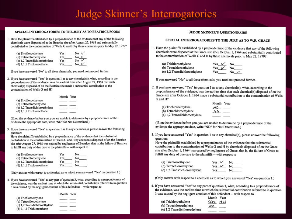 Judge Skinner's Interrogatories