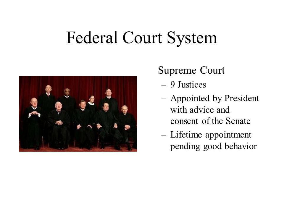 Federal Court System Supreme Court 9 Justices