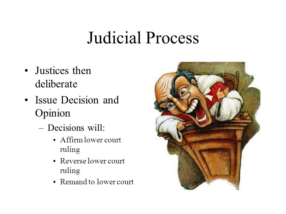 Judicial Process Justices then deliberate Issue Decision and Opinion