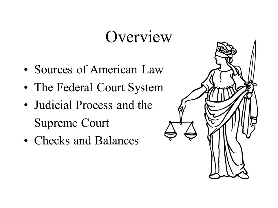 Overview Sources of American Law The Federal Court System