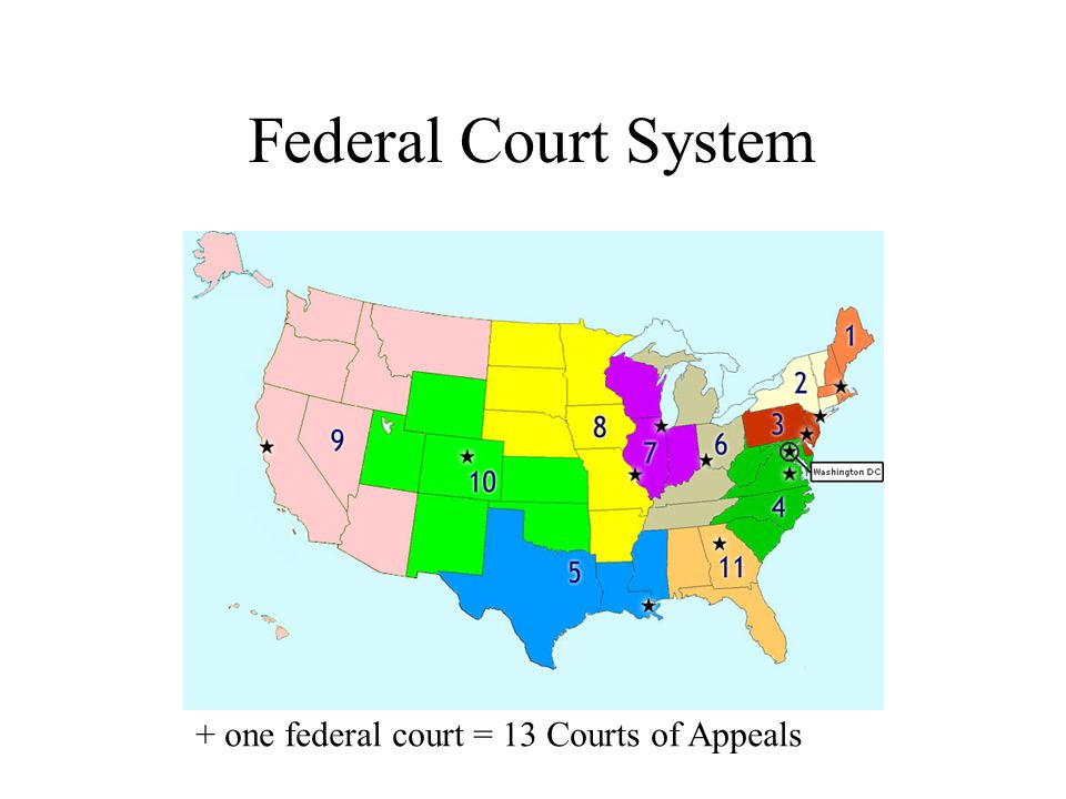 Federal Court System + one federal court = 13 Courts of Appeals