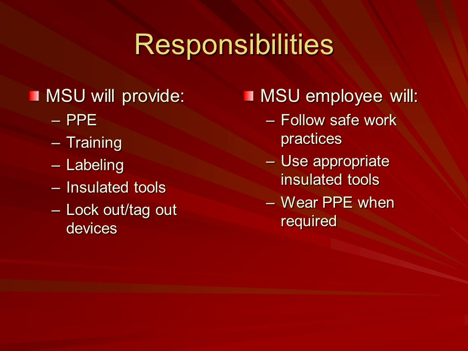 Responsibilities MSU will provide: MSU employee will: PPE Training