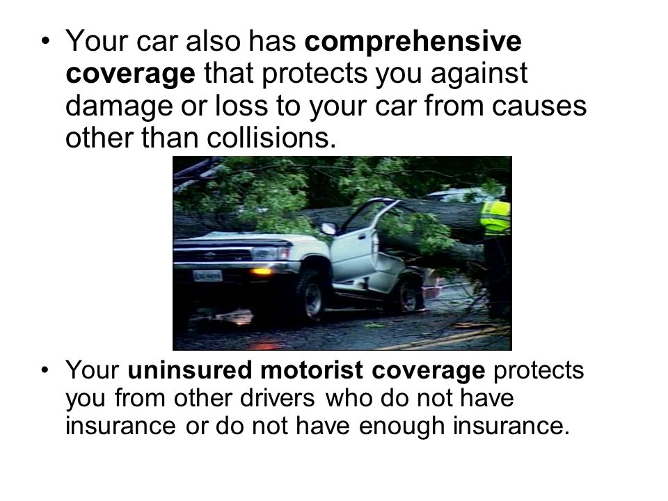 Your car also has comprehensive coverage that protects you against damage or loss to your car from causes other than collisions.